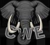C-W-E 195x195.png